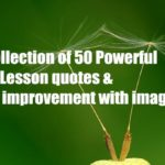 A collection of 50 Powerful Life Lesson quotes & Self improvement with images