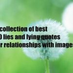 A collection of best 50 lies and lying quotes for relationships with images